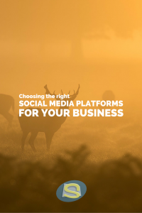 Choosing the right social media platforms for your business