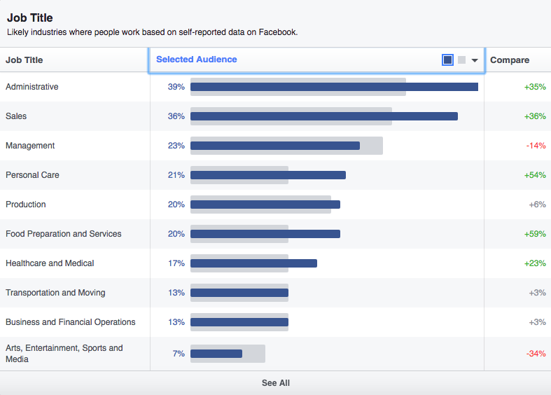 Facebook Audience Insights tool job title